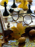 Glasses  on chess board Royalty Free Stock Images