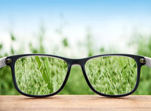 Glasses clear vision. Glasses in front of a field clear vision Royalty Free Stock Photo