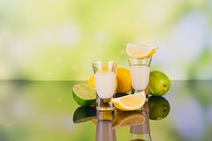 Glasses of cream liqueur with lime and lemon on green background stock photography