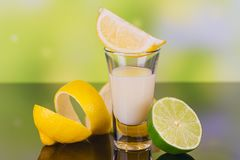 Glasses of cream liqueur with lime and lemon on green background royalty free stock photography
