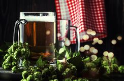 Glasses with czech light beer, dark night bar counter, hop cones and vine, selective focus stock images