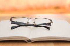 Glasses and diary Royalty Free Stock Photo