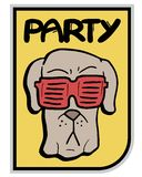 Glasses dog party Stock Images
