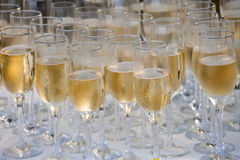 Glasses filled with champagne, ready to be served Stock Photo