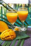 Glasses of fresh tropical smoothie or mango juice Stock Photos