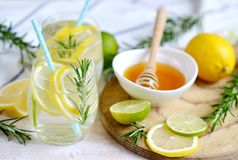 Glasses with Fresh Water Rosemary Lemon Lime Fruits Stock Images