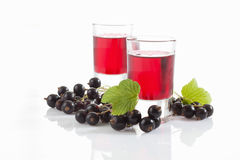 Glasses with genever, black currants Royalty Free Stock Image
