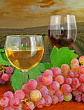Glasses and grape by a vineyard Stock Images