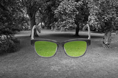 Glasses with green color in it on grey lawn background in York,. UK, Europe. Daltonism, color-blindness, vision concept royalty free stock photo