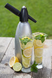 Glasses with homemade lemonade and siphon Stock Image