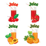 Glasses for juice from the cherries, strawberries, peaches and pumpkins Royalty Free Stock Images
