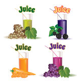Glasses for juice from the grapes, carrot and blackberry Stock Images