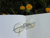 Glasses laying on open book with garden flowers in the background. Glasses laying on open book on the garden ground with yellow dandelions in the back Stock Photo