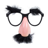Glasses with Mustache and Eyebrows Stock Image