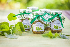 Glasses with Nettle Pesto and decoration stock photos
