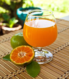 Glasses of orange juice Stock Photography