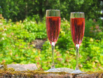 Glasses of pink champagne. On the ruins of the manor Royalty Free Stock Photography