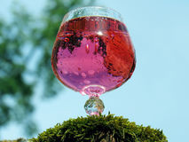 Glasses of pink champagne. Summer day in the open air Royalty Free Stock Photography