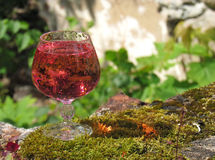 Glasses of pink champagne. Summer day in the open air Stock Photo