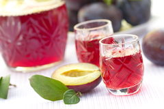 Glasses of plum alcohol and fresh plums Royalty Free Stock Images