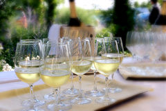 Glasses of prosecco wine. Table with tray, glasses of prosecco wine, bottle and garden background royalty free stock photo