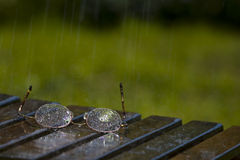 Glasses in the Rain Stock Photos