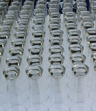 Glasses ready for a reception or party Royalty Free Stock Photography