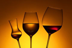Glasses with red and white wine Stock Image