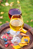 Glasses of red and white wine with grape on old wine barrel outside. Glasses of red and white wine with grape on old wine barrel outside royalty free stock photography