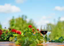 Glasses of red and white wine outdoors. Glass of red and white wine on a wooden table outdoors with red and green flowers royalty free stock photos