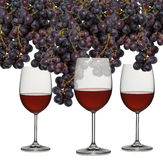 Glasses of red wine with grapes Stock Images