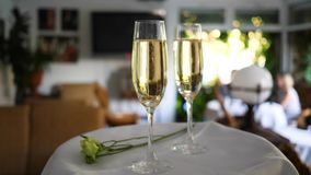 Glasses with ring at bottom in champagne on white tray with floret on unfocused background at romantic event. Glasses with ring at bottom in champagne on white stock video