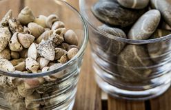Glasses of rocks and sea shells. 2 glasses of rocks and sea shells close-up on a wooden table Stock Photography