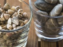 Glasses of rocks and sea shells 2. 2 glasses of rocks and sea shells close-up on a wooden table Stock Images
