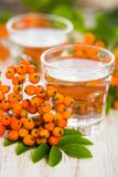 2 glasses of rowanberry brandy with rowanberries sorbus aucuparia on wooden tablet stock images
