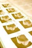 Glasses in rows Stock Photo