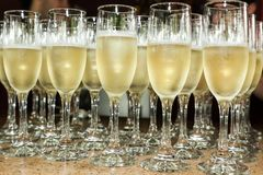 Glasses served with champagne, to make a toast at a social event.  royalty free stock images