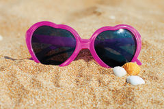 Glasses and shells in the sand Stock Photos
