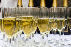 Glasses of sparkling champagne Royalty Free Stock Photo