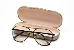 Glasses and a spectacle-case. Glasses laying near a spectacle-case Royalty Free Stock Photo