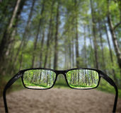 Glasses, vision concept, forest. Glasses and forest - great for topics like vision, eyesight problems or nature Stock Photography