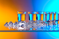 Glasses of vodka . royalty free stock images