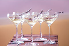 Glasses of with white champagne decorated with lavender Royalty Free Stock Image