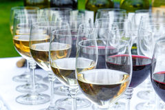 Glasses of white and red wine Royalty Free Stock Photography