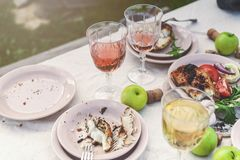 Glasses of white and rose wine, grilled fish plates, vegetables, salad and fruits on the table. Summer party in the backyard.