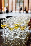 Glasses of white wine Royalty Free Stock Photos