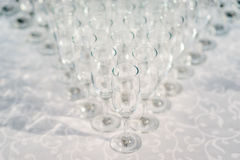 Glasses of white wine in a row on the table in pyramid. Sun light Royalty Free Stock Image