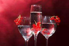 Glasses of wine Royalty Free Stock Image