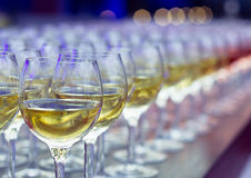 Glasses of wine royalty free stock photos