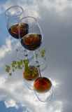 Glasses of wine , clouds and minerals Stock Photos